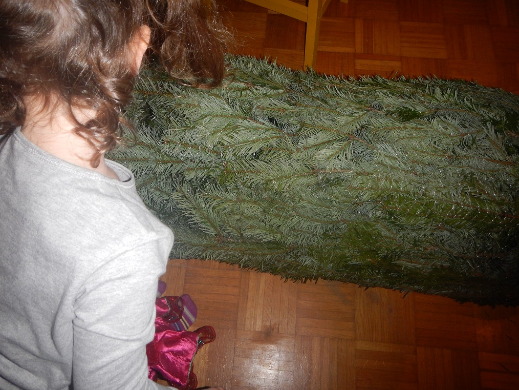 der erste weihnachtsbaum im haus mittwoch donnerstag. Black Bedroom Furniture Sets. Home Design Ideas